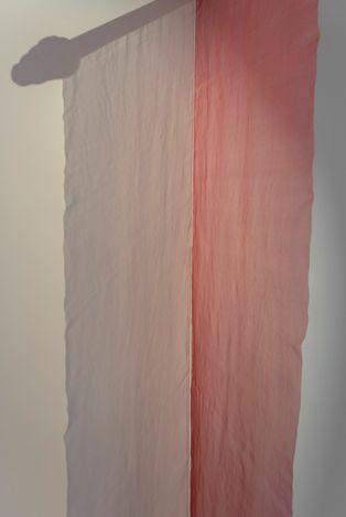 Exhibition view: Gal Lesha, Looking for Rubia Tinctorum, Huxley-Parlour, London (23 February–30 April 2021). Courtesy Huxley-Parlour.