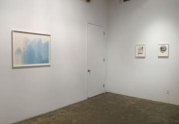 Exhibition view: Wang Gongyi, Winsor Blue, Chambers Fine Art, New York (17 November 2018–19 January 2019). Courtesy Chambers Fine Art.