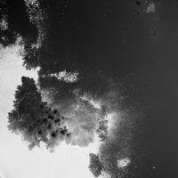 Oil Spill (1) by Rivane Neuenschwander contemporary artwork photography, print