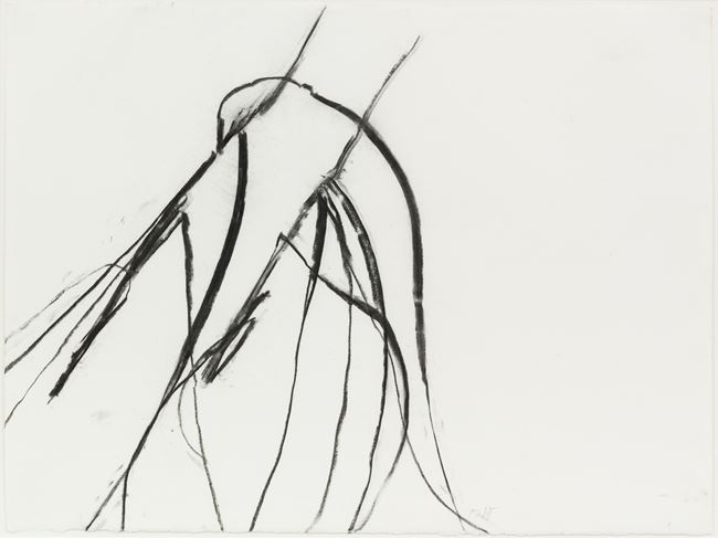 Nov. 26 2011 #2, Blue lyme grass (Leymus arenarius) by Susan Hartnett contemporary artwork
