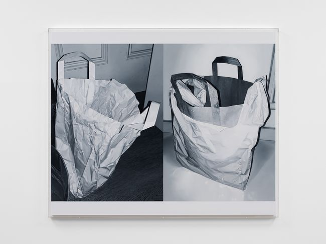 Double Bag by James White contemporary artwork