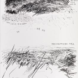 Shi Jin-Hua