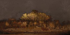 Scenapse #8 (Desert Nocturne) by Aziz + Cucher contemporary artwork