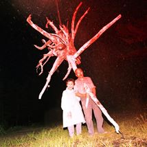 Shiga Lieko and Takeuchi Kota Win Tokyo Contemporary Art Award