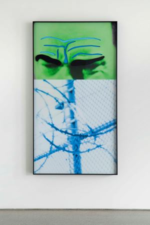 Raised Eyebrows/Furrowed Foreheads: Fence (with Barbed Wire) by John Baldessari contemporary artwork