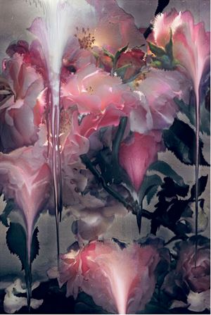 Rose 6 by Nick Knight contemporary artwork