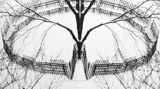 Contemporary art exhibition, André Kertész, Window Views at Bruce Silverstein, New York, USA