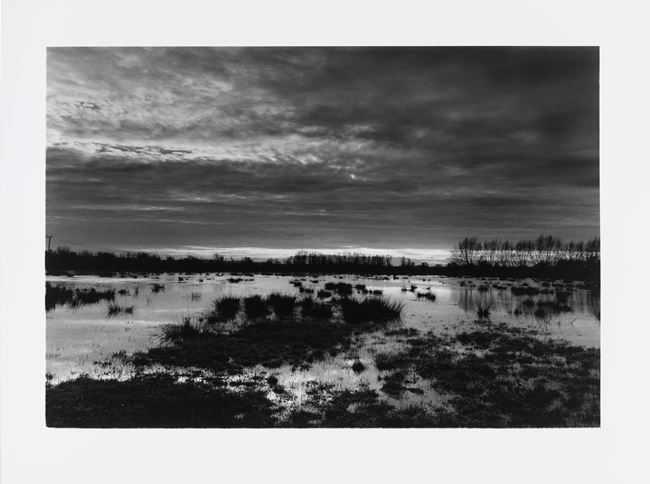 The Somerset levels at dusk by Don McCullin contemporary artwork