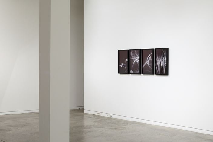 Exhibition view: Anne Noble, Observations from the Critical Zone, Two Rooms, Auckland (1–30 November 2019). Courtesy Two Rooms.