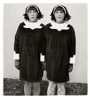 Diane Arbus/ Identical Twins, Roselle, New Jersey (1967) by Sandro Miller contemporary artwork