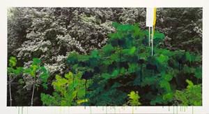 Study of green-white flower by Honggoo Kang contemporary artwork