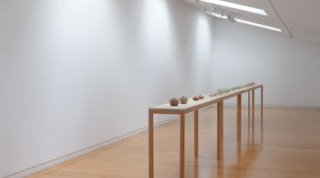 Contemporary art exhibition, Lauren Winstone, Gathering and Scattering at Two Rooms, Auckland