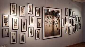 Contemporary art exhibition, Ernest Pignon-Ernest, Ernest Pignon-Ernest at Galerie Laurentin, Paris - Bruxelles, Brussels