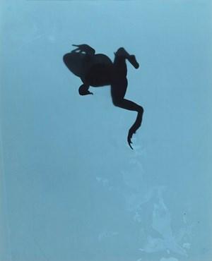Hoppings C test B by Kunié Sugiura contemporary artwork