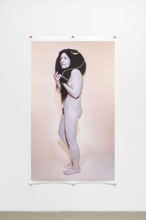Gorgone VII (apparition) by Dominique Gonzalez-Foerster & Camille Vivier contemporary artwork