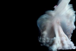 Ming Xi wearing Chanel Haute Couture by Nick Knight contemporary artwork