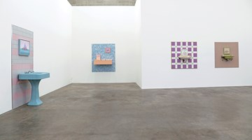 Contemporary art exhibition, Emily Hartley-Skudder, Blue Rinse at Jonathan Smart Gallery, Christchurch