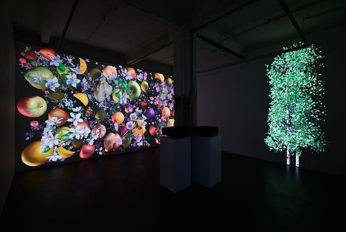 Exhibition view: Jennifer Steinkamp,Still-Life, Lehmann Maupin,Hong Kong (19 September–26 October 2019). Courtesy Lehmann Maupin, New York, Hong Kong, and Seoul.