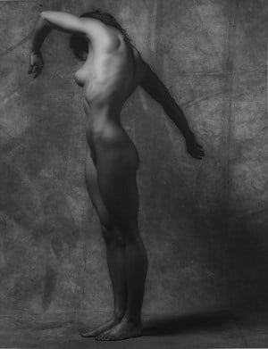 Lisa Lyon by Robert Mapplethorpe contemporary artwork