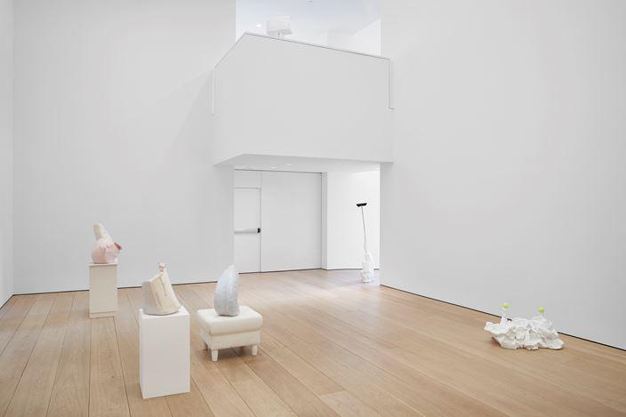 Exhibition view: Erwin Wurm,Yes Biological, Lehmann Maupin, 501 W 24thStreet, New York (16 January–22 February 2020). Courtesy the artist and Lehmann Maupin, New York, Hong Kong, and Seoul. Photo: Matthew Herrmann.