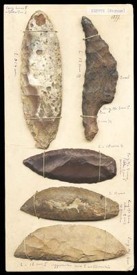 Board with 5 flint blades by Egyptian contemporary artwork sculpture