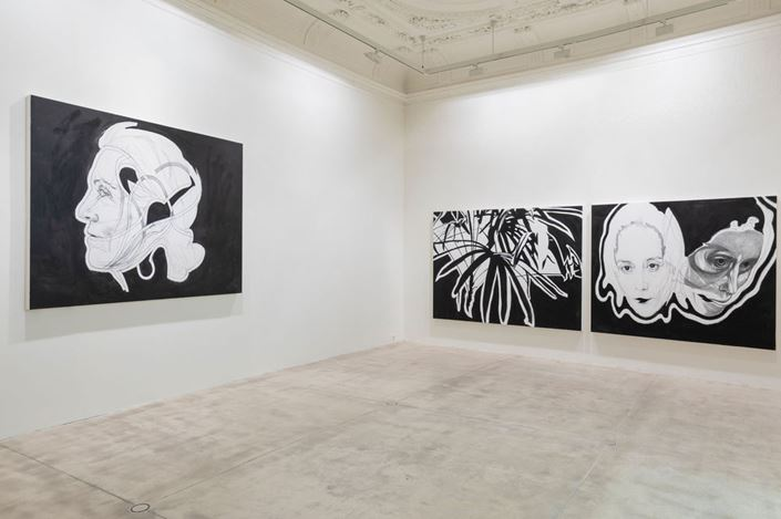 Exhibition view: Franz Graf, eventhe flowers cannot choosetheircolor, Galerie Krinzinger (26 June–4 September 2019). Courtesy Galerie Krinzinger.