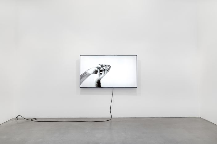 Exhibition view: Group Exhibition, Haptic Feedback, Galerie Thomas Schulte, Berlin(18 January–29 February 2020). Courtesy Galerie Thomas Schulte, Berlin. Photo: ©Stefan Haehnel.