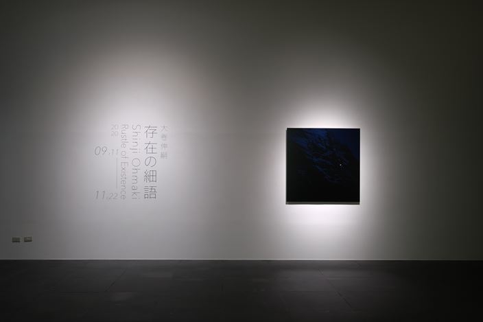 Exhibition view: Shinji Ohmaki, Rustle of Existence, Kuandu Museum of Fine Arts, Taipei (11 September–22 November 2020). Courtesy the artist and Kuandu Museum of Fine Arts.