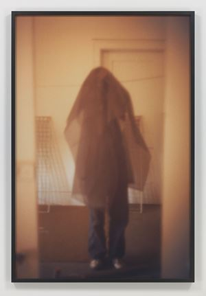 Veil by Paul McCarthy contemporary artwork
