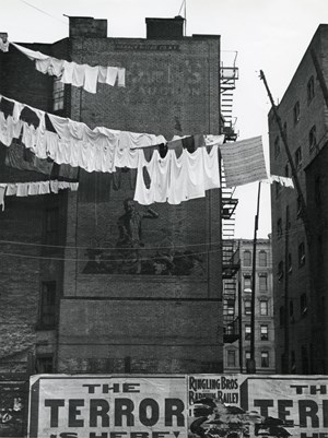 Untitled (laundry lines) by André Kertész contemporary artwork
