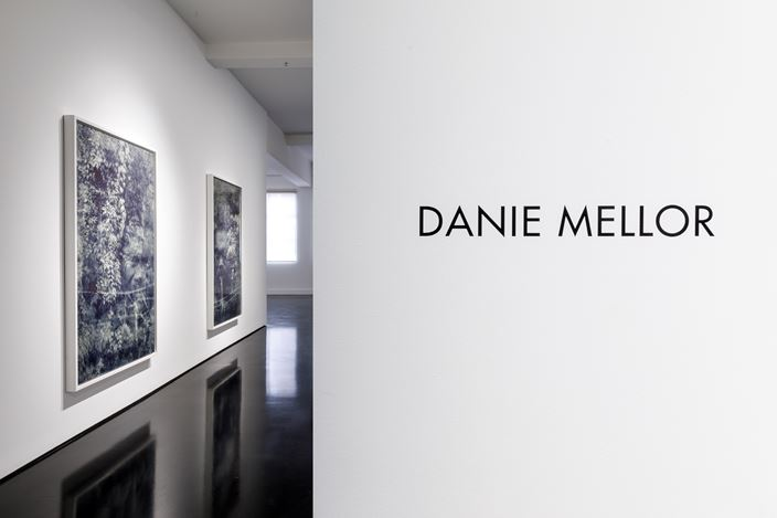 Exhibition view: Danie Mellor, The Sun Also Sets, Tolarno Galleries, Melbourne(7 August–5 September 2020). Courtesy Tolarno Galleries. (Please note: Due to COVID 19 Level 4 restrictions this exhibition is now Online Only.)