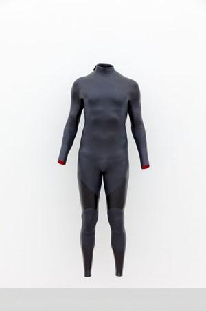 Self-Portrait (Wetsuit) by Alex Israel contemporary artwork