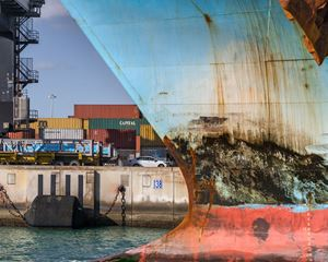 Cargo Ship by Anastasia Samoylova contemporary artwork