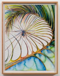 Palmleaf Spider by Faith Wilding contemporary artwork painting, works on paper, drawing