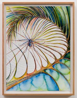 Palmleaf Spider by Faith Wilding contemporary artwork