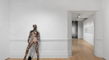Contemporary art exhibition, Annegret Soltau, Spider at Richard Saltoun Gallery, London