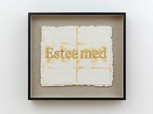 Esteemed by Nari Ward contemporary artwork