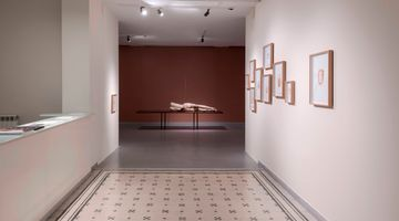Contemporary art exhibition, Yaşam Şaşmazer, either/or at Zilberman Gallery, Istanbul