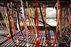 Quipu Austral by Cecilia Vicuña contemporary artwork