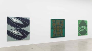Contemporary art exhibition, Tess Jaray, Return to Vienna at Vienna Secession, Austria