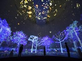Robert Zhao Renhui and teamLab: Glass Rotunda at National Museum of Singapore