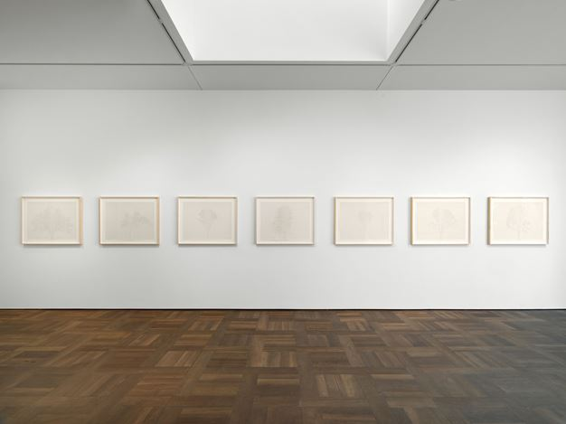 Exhibition view: Charles Gaines, Drawings, Hauser & Wirth, St. Moritz (16 February–29 March 2020). © Charles Gaines. Courtesy the artist and Hauser & Wirth.