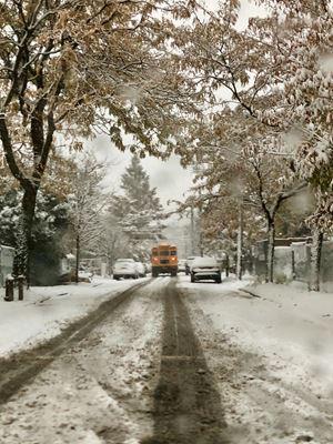 School Bus, East New York by Roe Ethridge contemporary artwork