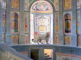 Research In Progress: A Q&A with Karen Knorr