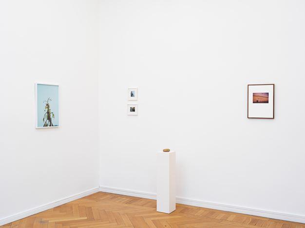 Exhibition view: Group Exhibition,der grosse Anspruch des kleinen Bildes, Barbara Wien, Berlin (1 December 2018–26 January 2019). Courtesy Barbara Wien.