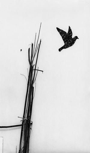 Kosmos by Lothar Baumgarten contemporary artwork