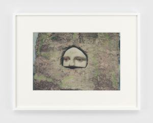 Eyes by James Welling contemporary artwork