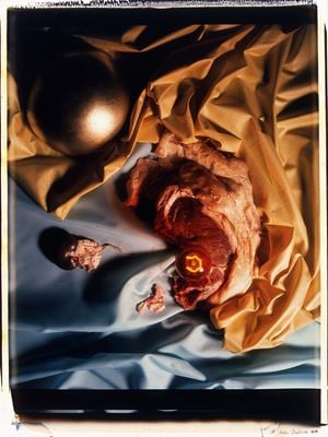 Meat Abstract No. 8: Gold Ball / Steak by Helen Chadwick contemporary artwork