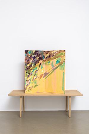 Suisai byôbu VIII by Gabriel Orozco contemporary artwork