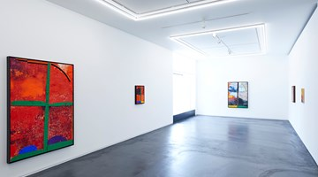 Contemporary art exhibition, Sterling Ruby, VERT at Taka Ishii Gallery, Complex665, Tokyo